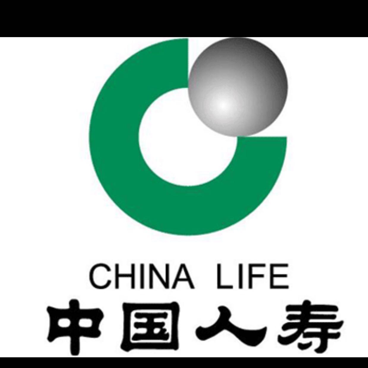 中国人寿庐江支公司