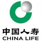 中国人寿保险股份有限公司庐江支公司